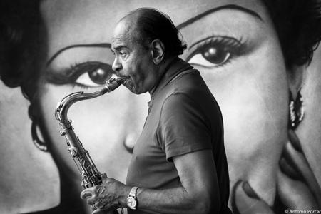 Benny Golson en Peñíscola Fondo: Billie Holiday, por Chile Vinaros © Antonio Porcar, 2013.