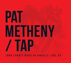 pat_metheny_tap