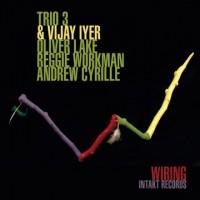 Trio 3_Vijay Iyer Wiring