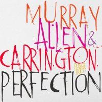Murray - Allen - Carrington Power Trio_Perfection_Motema_2016