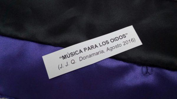 Seidagasa Josetxo Goia-Aribe Musica para los oidos